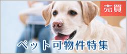 ペット可物件特集(中古マンション)