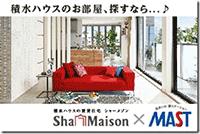 MASTsha-maison