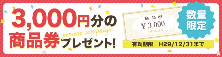 3000円商品券プレゼントキャンペーン
