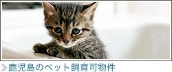 鹿児島のペット飼育可物件